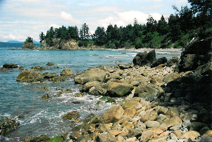 Cape Alava (by Dan Keusal)