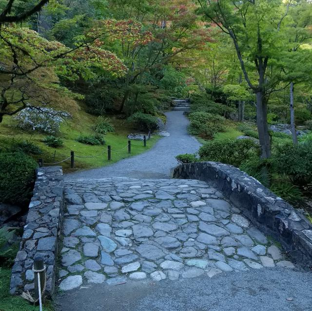Stone Bridge, Path. Japanese Garden, Washington Park Arboretum, by Dan Keusal