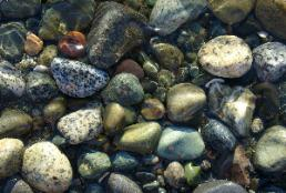 Kala Point Sea Stones (photo by Dan Keusal)